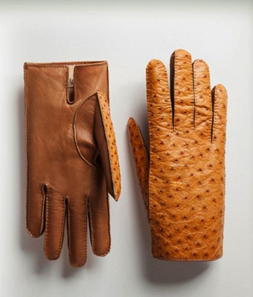 lavabre_cadet_ostrich glove