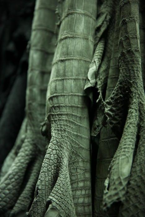 Seraphin leather jackets Paris crocodile