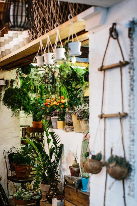 flower-shop-peckham